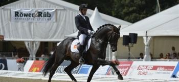 Grand Galaxy Win udtaget til UVM, i alt 7 heste med fra Helgstrand Dressage